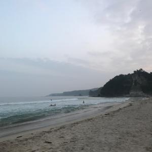 波に乗る人生