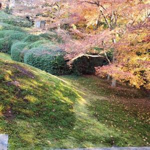 """""""奇跡と意識の7つのステージ 。光明院の庭石に人の顔が見えますか?"""""""