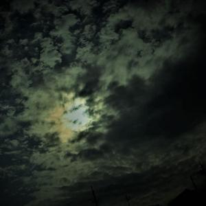 """""""「七つの意識のステージ」。金環日食が「マザーテレサとヒットラーの顔」に変身(写真)。"""""""