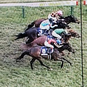 競馬「髙松宮記念」を「偶然の一致の法則」で馬単、馬連、単勝を的中