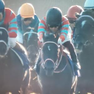 競馬「菊花賞」はコントレイルが三冠馬になり新たな「神話」が生まれました。