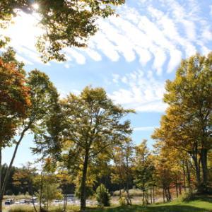 スカイバレー&裏磐梯の秋景色・17