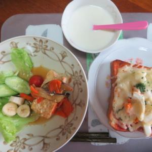 朝:ピザトースト、野菜サラダ、あんかけ豆腐&飲むヨーグルト 昼:ブルーノートのハンバーグ定食 夜:自家製鶏モモ肉&舞茸入り野菜カレー