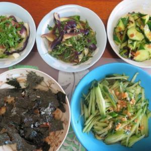 朝:トースト&コーヒー、春菊添え、ダブル目玉焼き 昼:鶏めしの素炊き込み御飯、きゅうり&茄子の料理 夜:天丼、ナポリタン&おは
