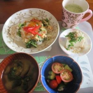 朝:卵とじかつ丼、キュウリとトマトの酢和え、冷奴、茄子の味噌汁&野菜ジュース 昼:焼鳥ももタレ、デニッシュ食パン&フルーツ杏仁 夜:茄子・グリンピース添えカレーライス
