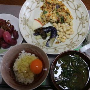 朝:卵焼き&サラダ、茄子の味噌汁、卵御飯、野菜ジュース&マスカット 昼:焼鳥ももタレ、アメリカンドッグ、サバスミルクヨーグルト&杏仁豆乳 夜:天丼&卵汁