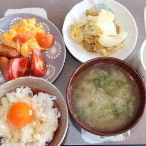 朝:炒り卵、ソーセージ、鶏皮煮、卵御飯、味噌汁&野菜ジュース 昼:Bigソーセージパン、バナナ&コーヒー 夜:ハヤシライス&フレンチトースト