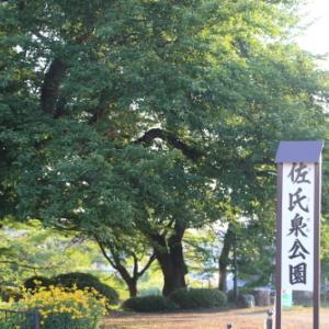 熊野神社、花沢大橋、松川橋への散歩 2021.7.21