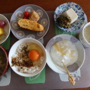 朝:卵焼き、卵御飯、味噌汁、冷奴、果物、ヨーグルト&野菜ジュース 昼:カリカリ梅🍙、串だんご&6種類の野菜・果物ジュース 夜:行方羊肉店の義経焼、鰯ふりかけ御飯、林檎&シャインマスカッ