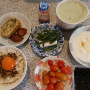 朝:卵焼き、卵御飯、冷奴、モズク、ミニトマト、ヨーグルト、ヤクルト&野菜ジュース 昼:おはぎ、鶏足&豚肉とサラダ 夜:目玉焼き添えチャーハン、じんたんおはぎ、茄子の味噌炒め、もずく&りんご