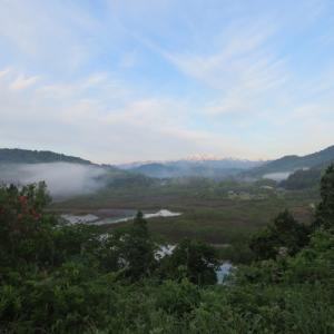 わらびを採りに、風景を撮りに、中津川へ 2019.6.2