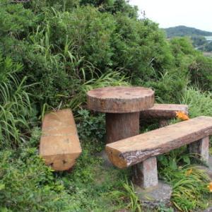 下田須崎遊歩道から太平洋の絶景を堪能する・18