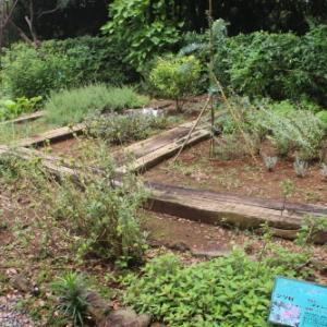 「絶景」と「縁結び」の名所:寝姿山自然公園・8