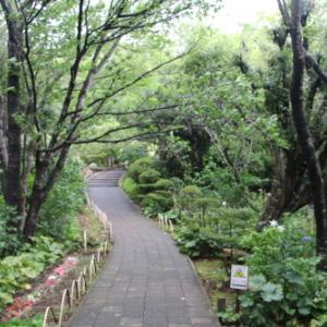 「絶景」と「縁結び」の名所:寝姿山自然公園・9