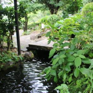 「絶景」と「縁結び」の名所:寝姿山自然公園・18
