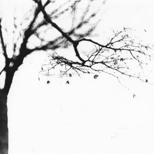 モノクロ写真(141)