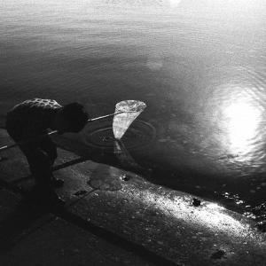 白黒写真(152)