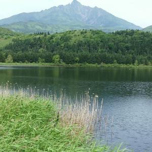 8月お盆過ぎの日本最北にある利尻礼文島!