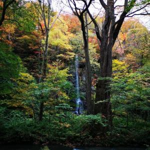 今が見頃❗十和田湖と奥入瀬渓流の紅葉🍁