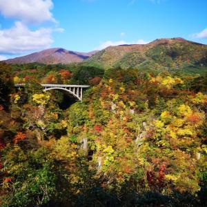 鳴子峡の紅葉が見頃でした‼️🍁
