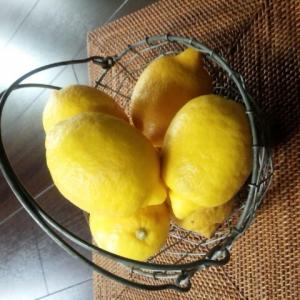 瀬戸内の美味しいレモンで(//∇//)