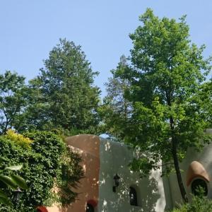 三鷹の森ジブリ美術館〜食べるを描く。〜