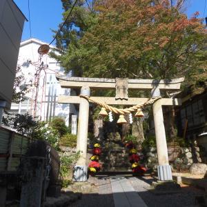 """天に向かって真っすぐに立つ""""子宝の杉(夫婦杉)""""「日枝神社」"""