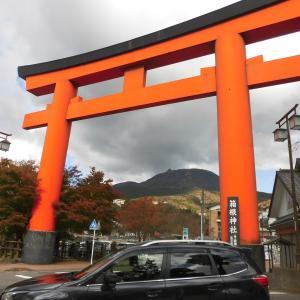 「箱根のS席」と言われる絶景「成川美術館」