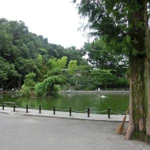 今は観光名所「赤塚城址」