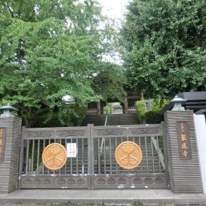 堂々たる東京大仏「乗蓮寺」