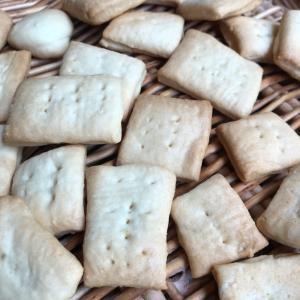 酵母クッキー