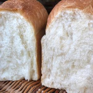 自家製酵母で捏ねない食パンレシピ完成