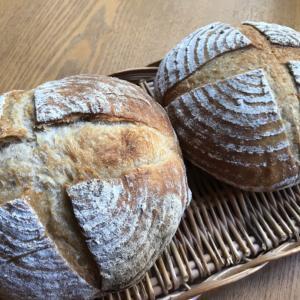 【カンパーニュ】同じ生地でも全く違うパンになりました