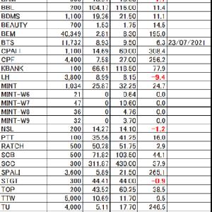 【タイ株】現在の保有株&株数(2021.6.4)