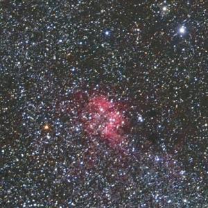 星野写真(60Da、100mm) ケフェウス座領域1