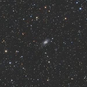 星野写真(60Da、100mm) きりん座領域3