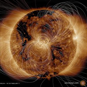宇宙物理学  太陽の磁場の様子