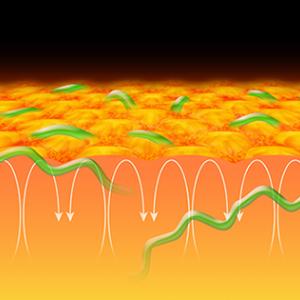 宇宙物理学  太陽磁場の形成メカニズム