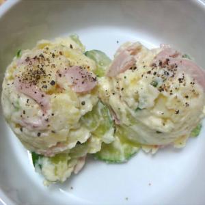 5種の金平・ポテトサラダ