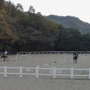京産大会へ向けて障害練習