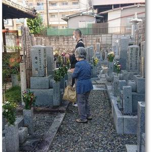 護国寺の墓回向