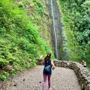 2年間閉鎖していたマノアの滝がリオープン!