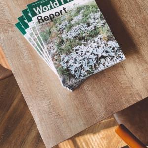 「ワールドプランツレポート」 入荷しました!✨