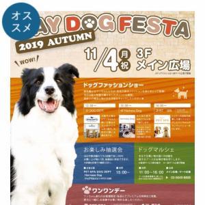 横浜ベイクォーター BAY DOG FESTA 2019AUTUMN