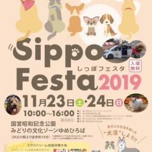 SippoFesta2019 イベント案内