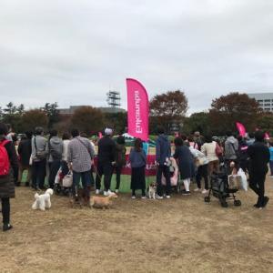 昭和記念公園 sippo festa2019 イベントレポート