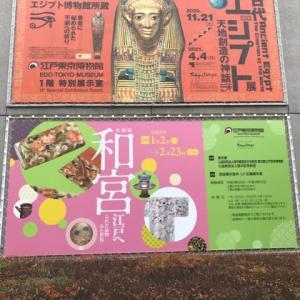 江戸国立博物館の古代エジプト展
