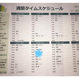 10/16 育成テスト結果