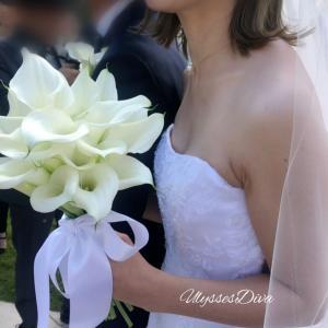 諦めないで良かった結婚式で着たいドレスを着れる喜び