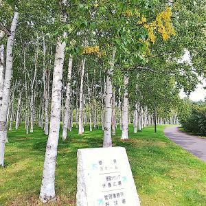 前田森林公園展望ラウンジ